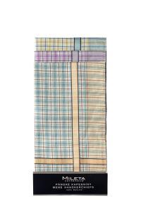 Náhled Mileta kapesníky pastelové barvy 40x40cm, 6ks mix