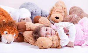 Plyšák - polštářek SLEEP WELL - LEV